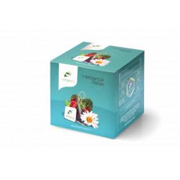 Напиток чайный Herbarica Relax время для отдыха 20 пирамидок 40 гр